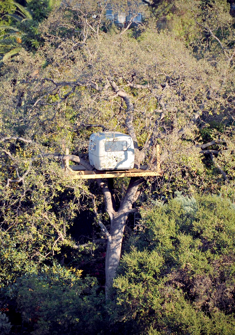 Click image for larger version  Name:An-Airstream-In-A-Tree.jpg Views:117 Size:641.3 KB ID:155008