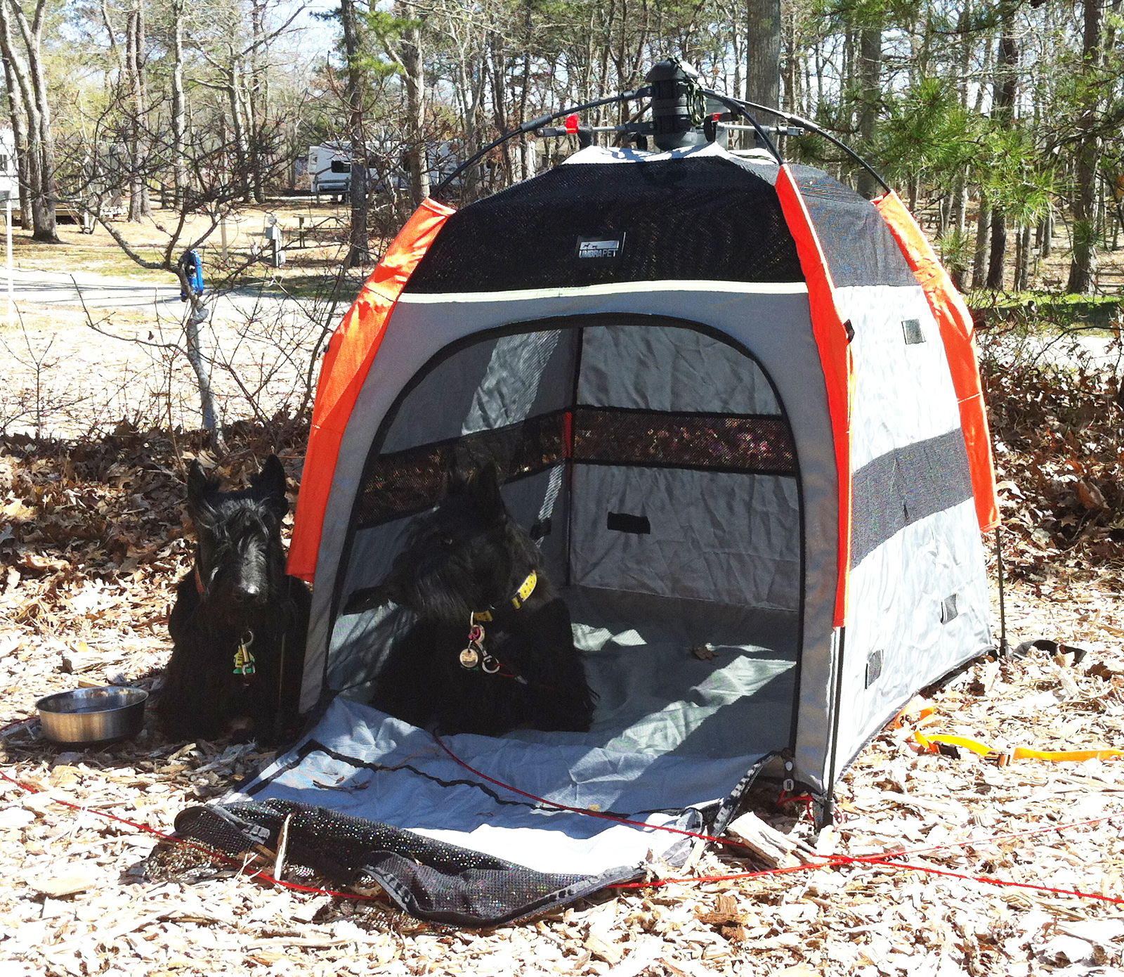 Click image for larger version  Name:pup_tent_1600.jpg Views:183 Size:1.61 MB ID:155273