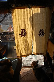 Click image for larger version  Name:DSC_0026 Noren curtains & dog gate.jpg Views:107 Size:481.5 KB ID:161740