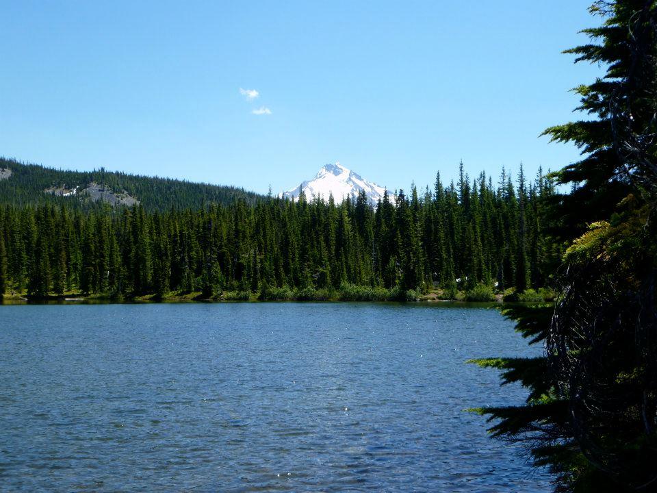 Click image for larger version  Name:lake.jpg Views:153 Size:111.3 KB ID:162856