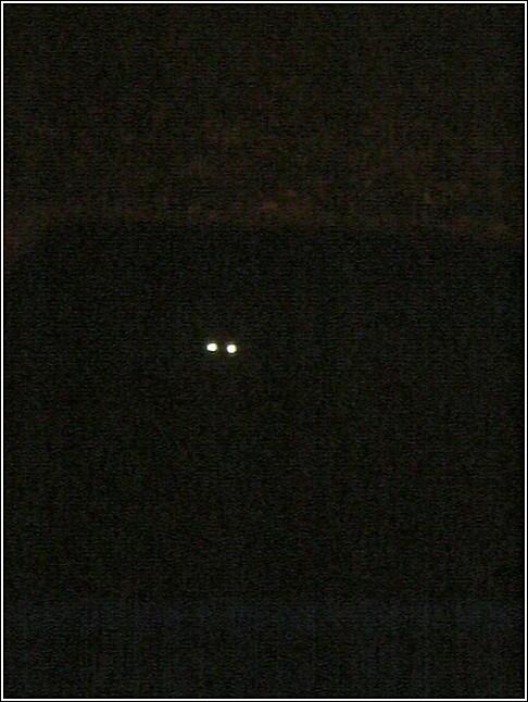 Click image for larger version  Name:El Gato Diablo.jpg Views:122 Size:79.9 KB ID:16446