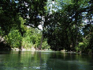 Click image for larger version  Name:San Marcos River 6.jpg Views:102 Size:439.3 KB ID:168573