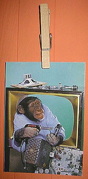 Click image for larger version  Name:chimp.jpg Views:64 Size:29.4 KB ID:16982