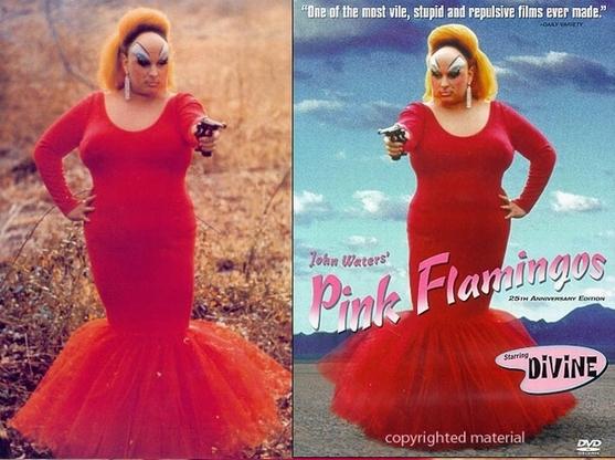 Click image for larger version  Name:2 pink flim.jpg Views:98 Size:194.1 KB ID:17116