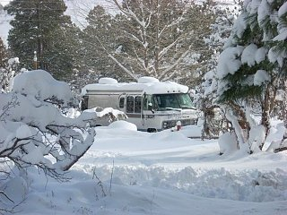Click image for larger version  Name:DSCN0097:Bess in Flag snow.jpg Views:286 Size:136.2 KB ID:172433