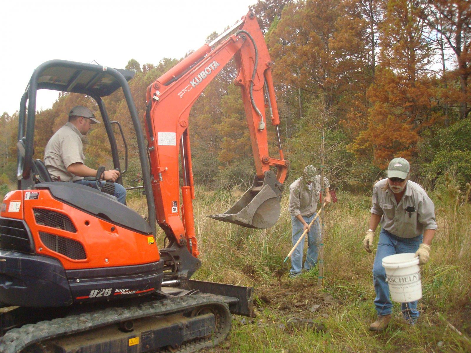 Click image for larger version  Name:Tree Planting Nov 8 12 503.jpg Views:71 Size:402.1 KB ID:172544