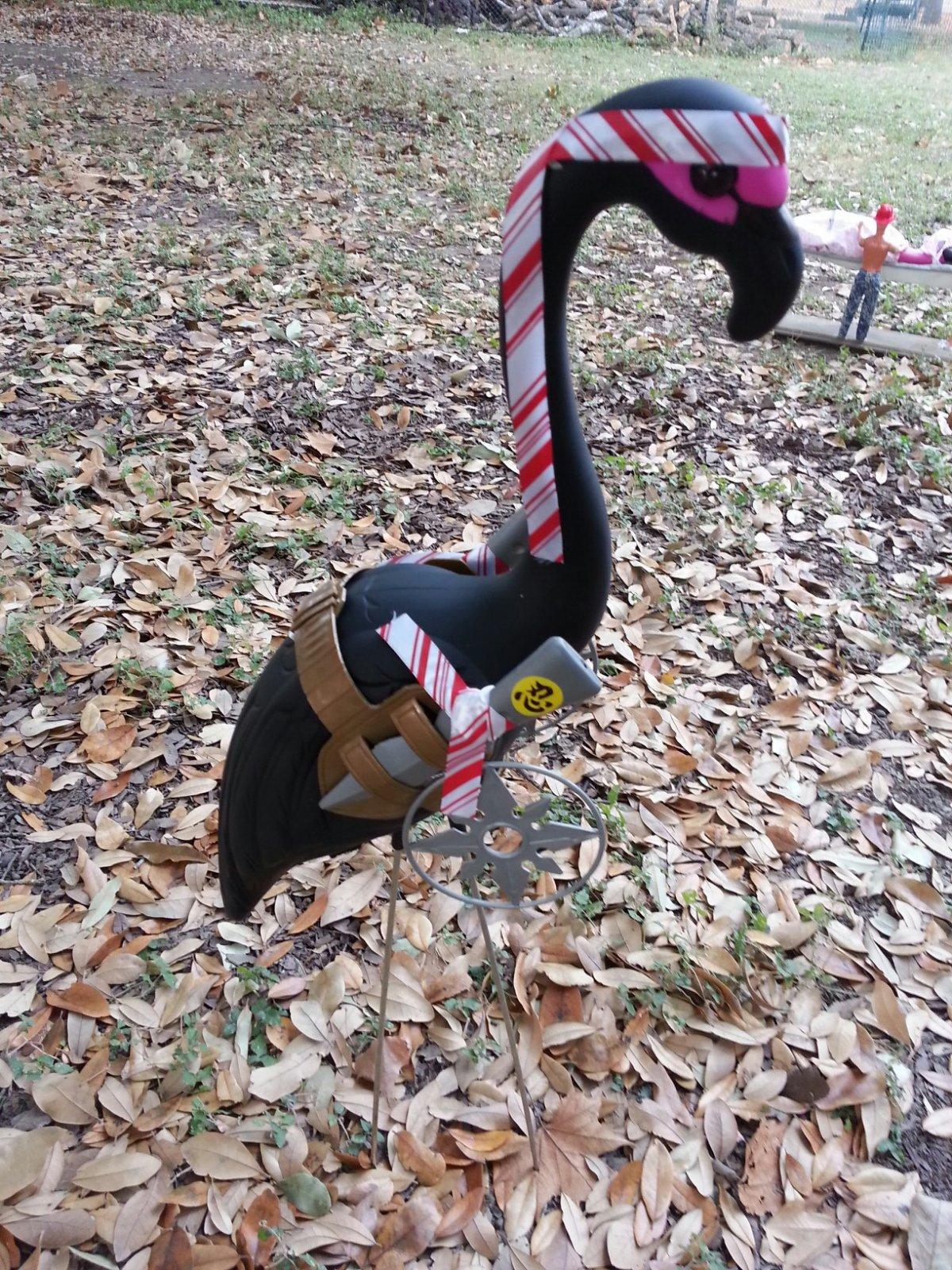 Click image for larger version  Name:Blanco Flamingo Ninja!.jpg Views:78 Size:573.9 KB ID:174334