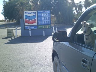 Click image for larger version  Name:Death Valley Gas Station JAN 2013.jpg Views:97 Size:363.2 KB ID:179471