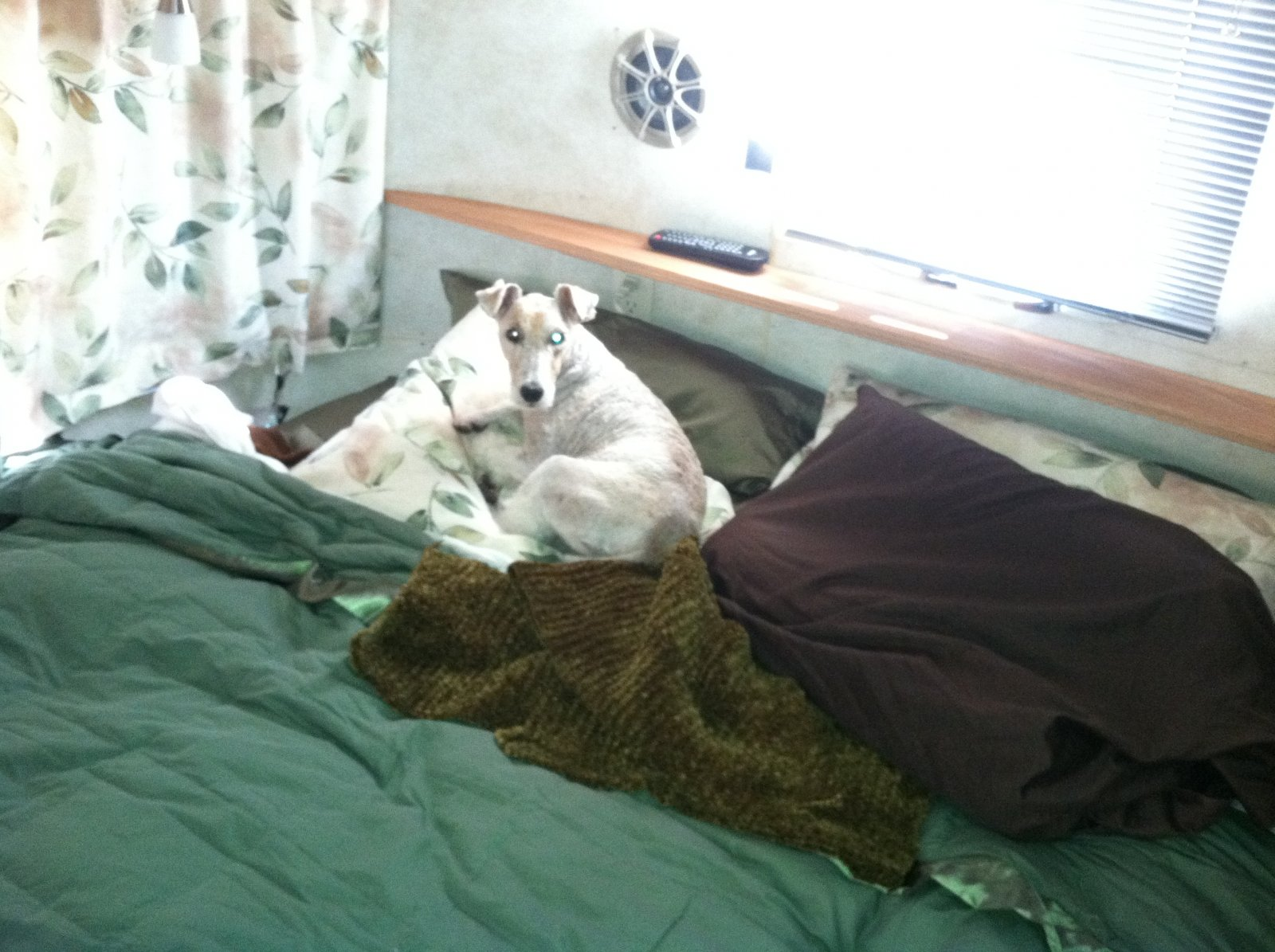 Click image for larger version  Name:Where Jaki Sleeps.jpg Views:108 Size:264.8 KB ID:180320
