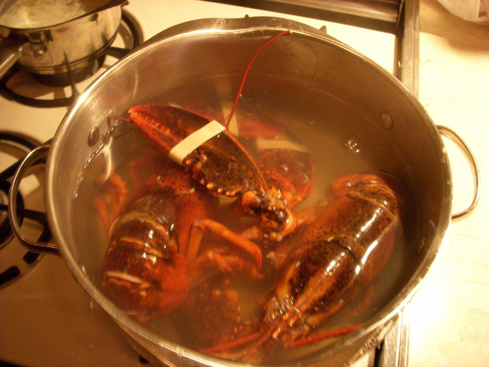 Click image for larger version  Name:Lobster Dinner Newport, RI 013.jpg Views:115 Size:296.6 KB ID:181944