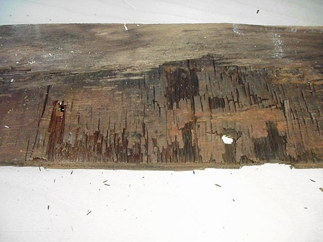 Click image for larger version  Name:Plywood damage under rear C channel a.JPG Views:111 Size:45.3 KB ID:18248