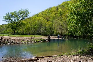 Click image for larger version  Name:Roaring River SP (11).jpg Views:55 Size:430.8 KB ID:184898