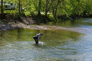 Click image for larger version  Name:Roaring River SP (17).jpg Views:67 Size:433.6 KB ID:184904