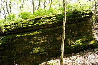 Click image for larger version  Name:Roaring River SP (28).jpg Views:63 Size:488.0 KB ID:184918
