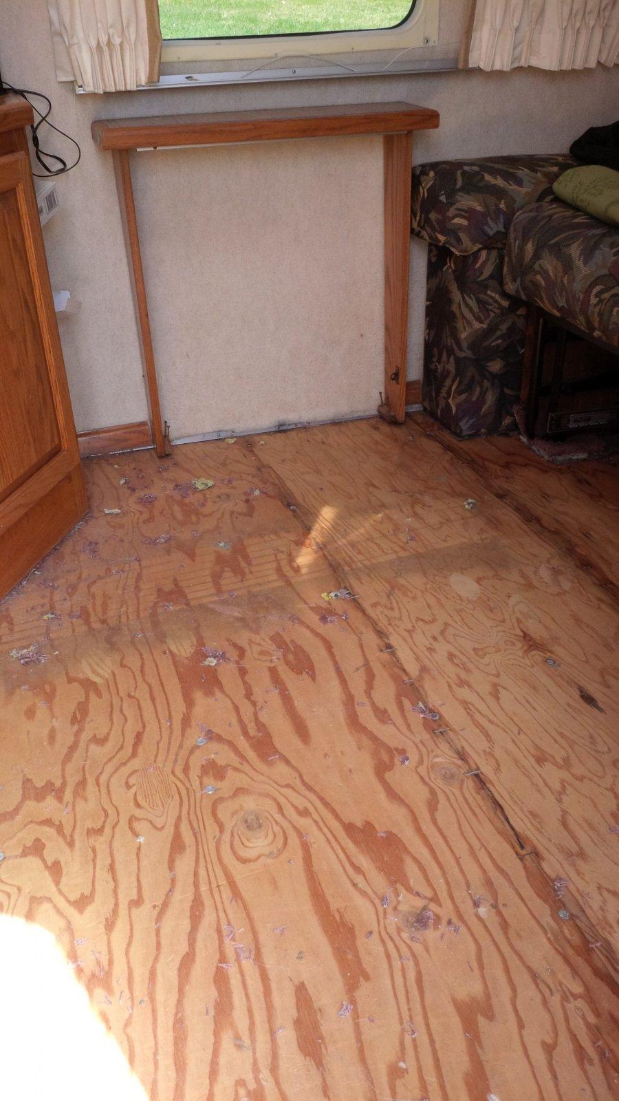 Click image for larger version  Name:carpet gone 1.jpg Views:399 Size:212.4 KB ID:185254