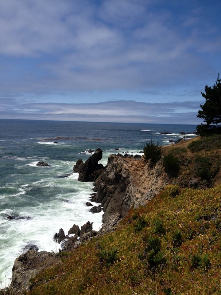 Click image for larger version  Name:Ocean Cove.JPG Views:90 Size:189.0 KB ID:187867