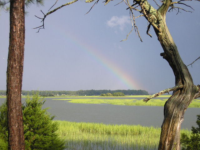 Click image for larger version  Name:River July 26, 2007 008.jpg Views:64 Size:78.4 KB ID:190587