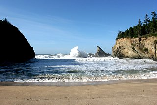 Click image for larger version  Name:IMG_4167 Shore Acres Cove-s.jpg Views:89 Size:86.1 KB ID:19147