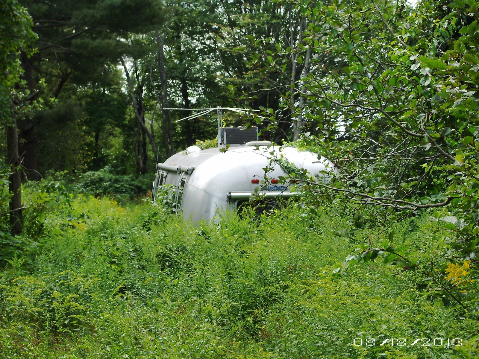 Click image for larger version  Name:Airstream in the weeds 001.jpg Views:58 Size:684.5 KB ID:193742