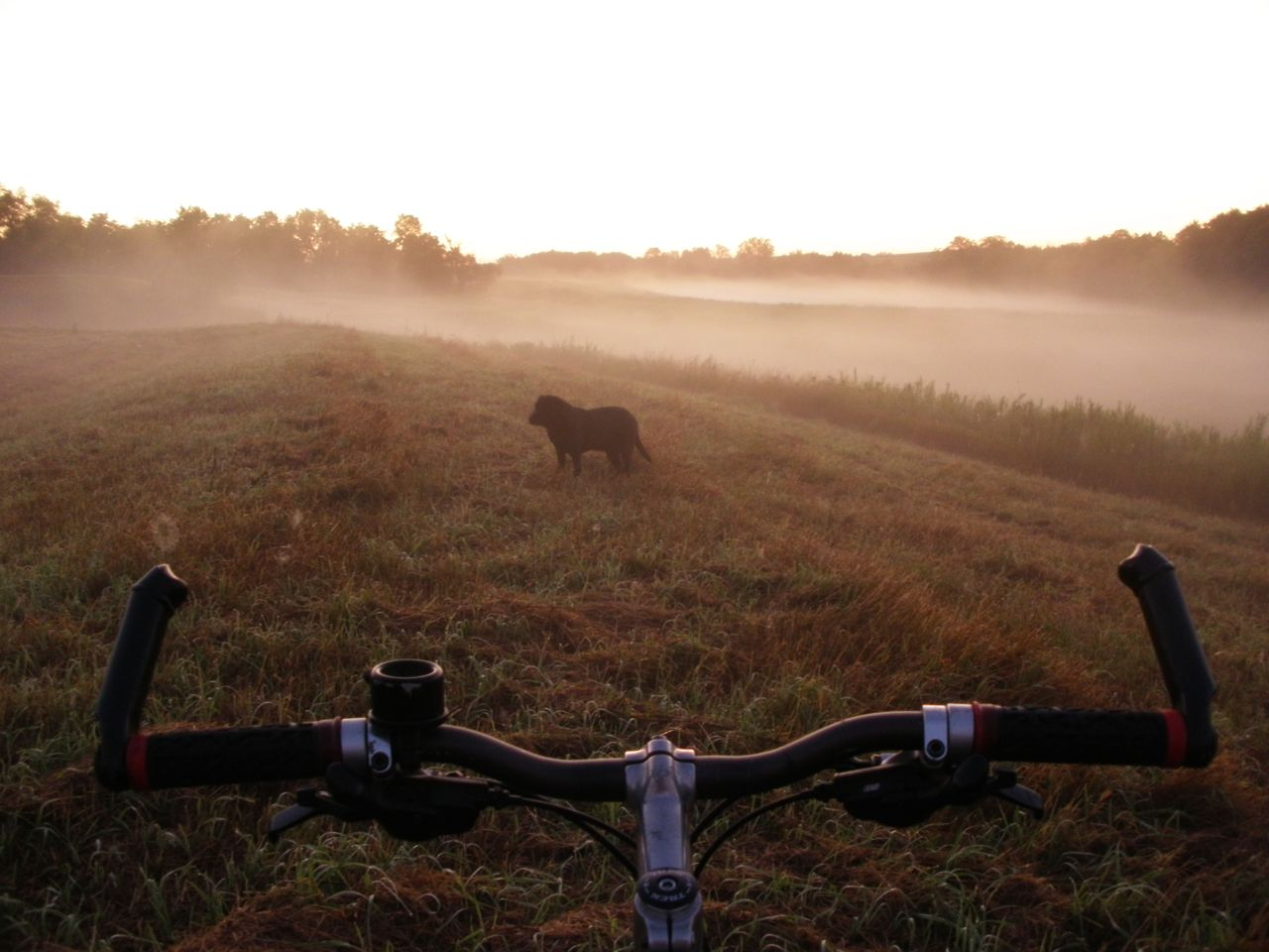 Click image for larger version  Name:Foggy morn.jpg Views:52 Size:126.4 KB ID:194014