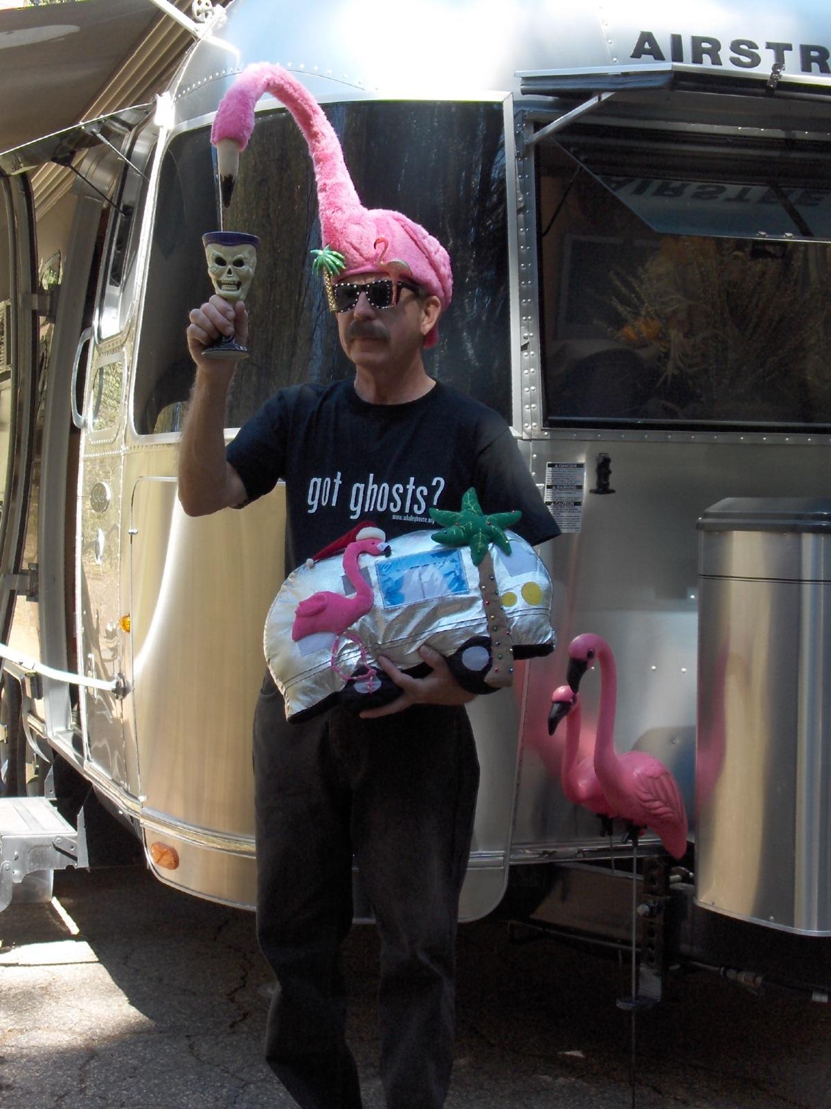 Click image for larger version  Name:HPIM1529 Flamingo hat & cushion.jpg Views:88 Size:432.8 KB ID:196670