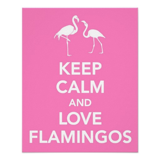 Click image for larger version  Name:keep_calm_and_love_flamingos_print-rc2b16d637c264465bd6190dc932336e9_wvc_8byvr_512.jpg Views:80 Size:35.1 KB ID:196836
