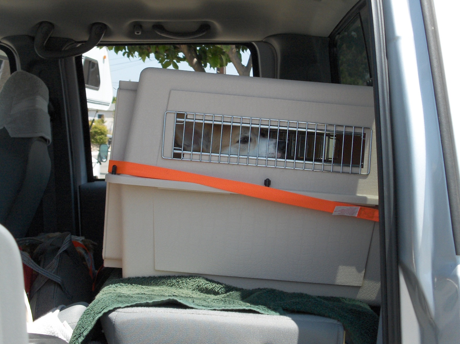 Click image for larger version  Name:HPIM2559 Dog crates in F-250.jpg Views:64 Size:442.5 KB ID:198287