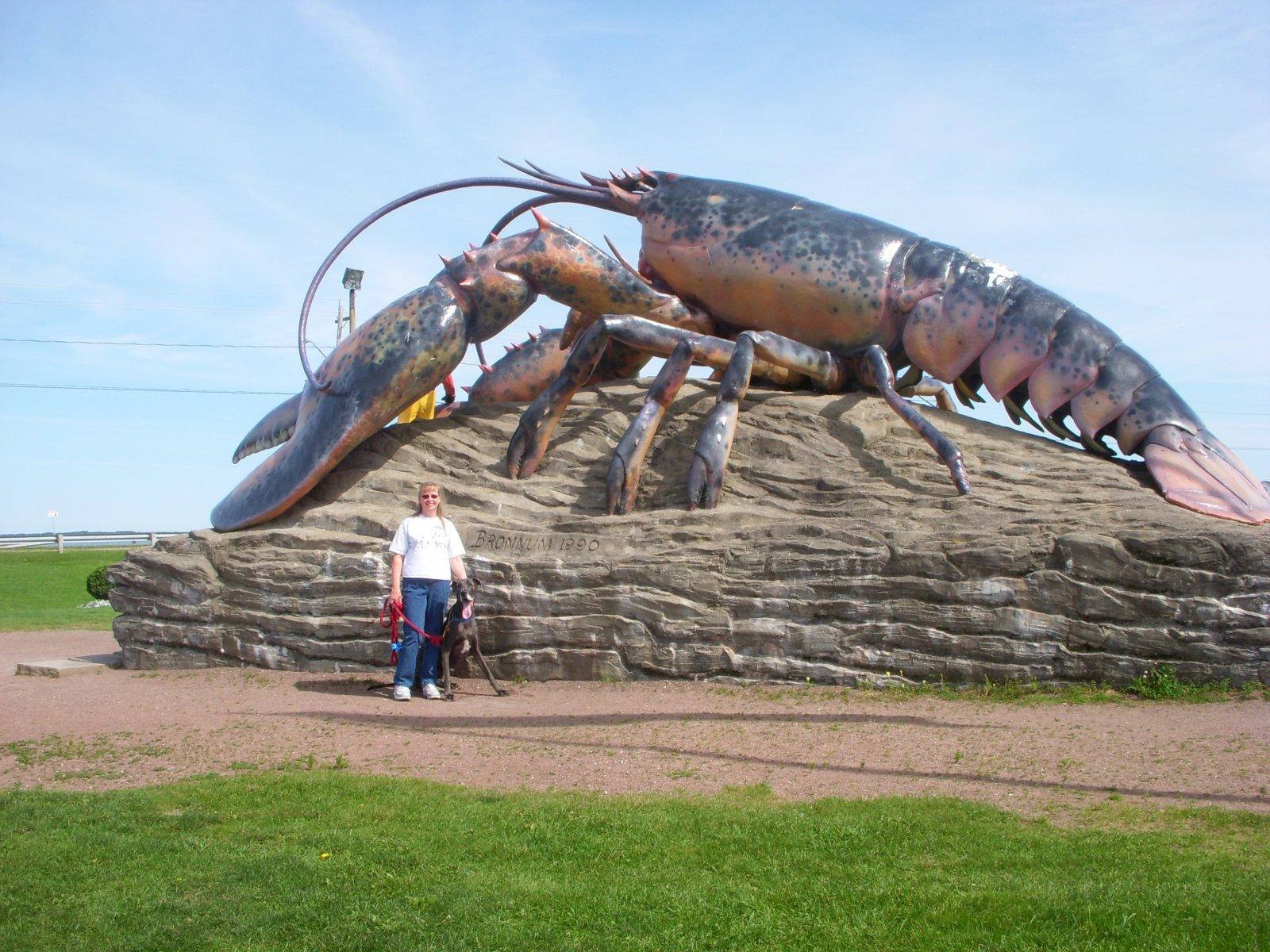 Click image for larger version  Name:Acadian Coast Sept2011 016.jpg Views:95 Size:364.7 KB ID:198493