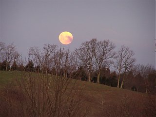 Click image for larger version  Name:moonset.jpg Views:149 Size:280.2 KB ID:20163