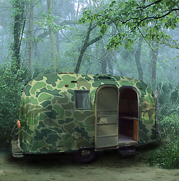 Click image for larger version  Name:camo.jpg Views:335 Size:90.9 KB ID:2028