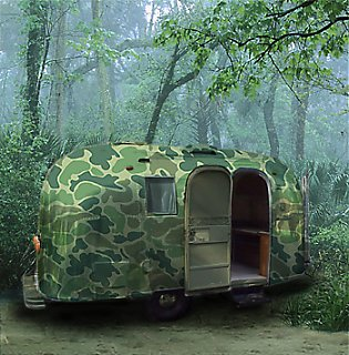 Click image for larger version  Name:camo.jpg Views:352 Size:90.9 KB ID:2028