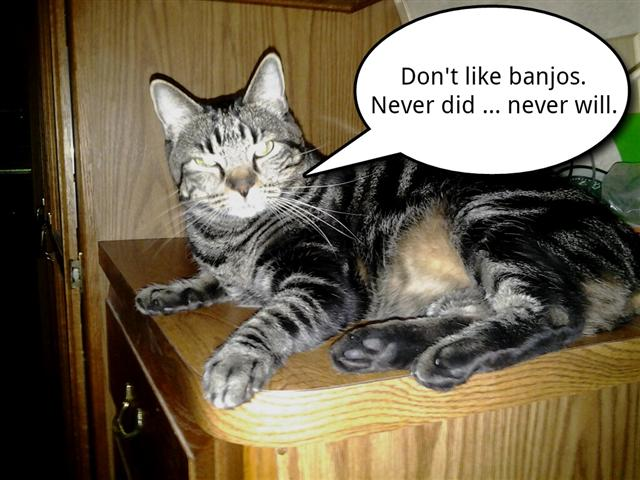 Click image for larger version  Name:Don't like banjos (Small).jpg Views:90 Size:53.6 KB ID:204076