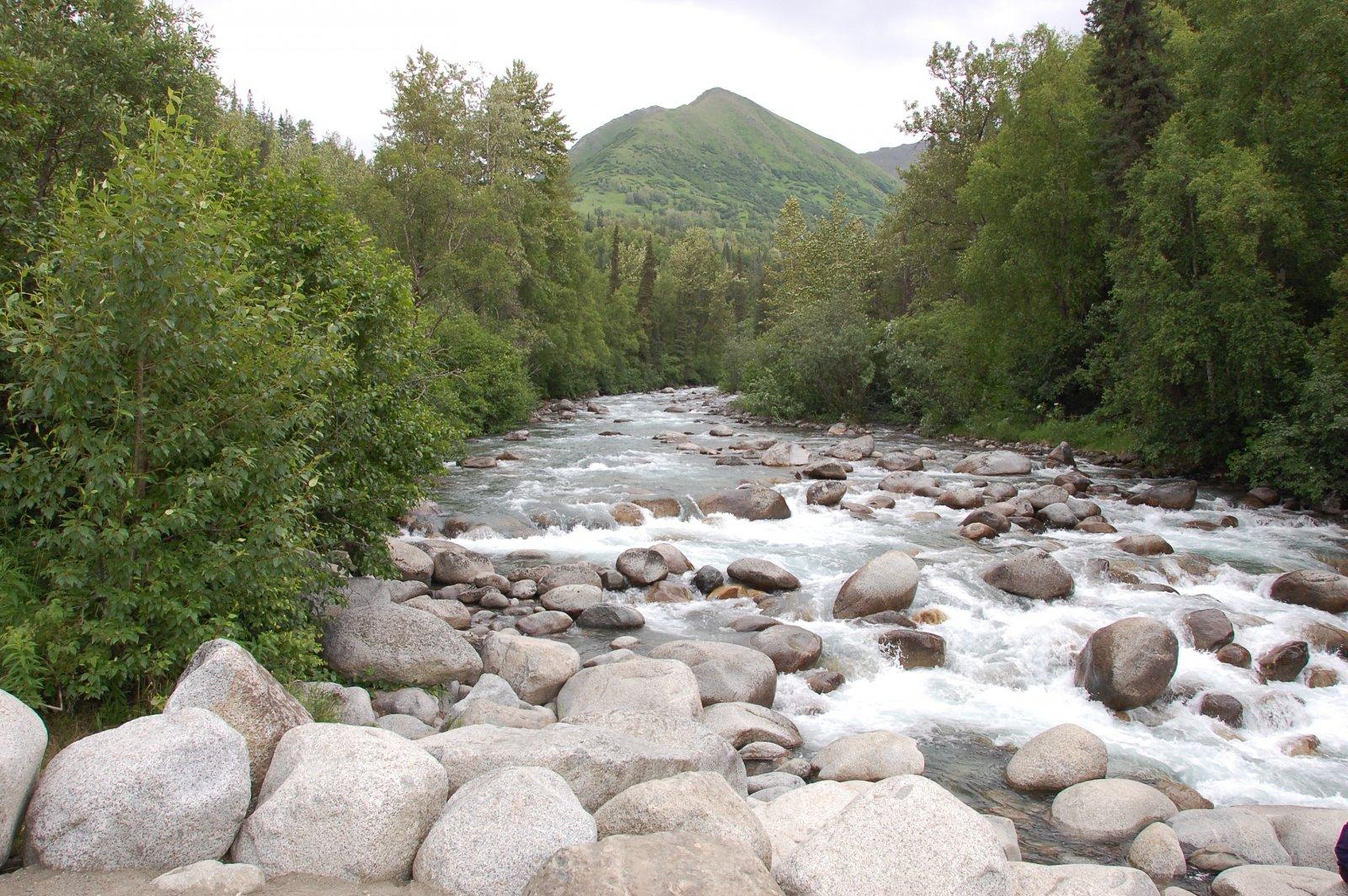 Click image for larger version  Name:Alaska Scenes 007.jpg Views:96 Size:472.6 KB ID:205694