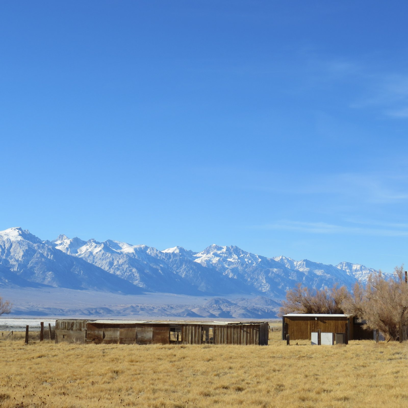Click image for larger version  Name:Lone Pine Christmas 2013 075.jpg Views:158 Size:256.1 KB ID:206759