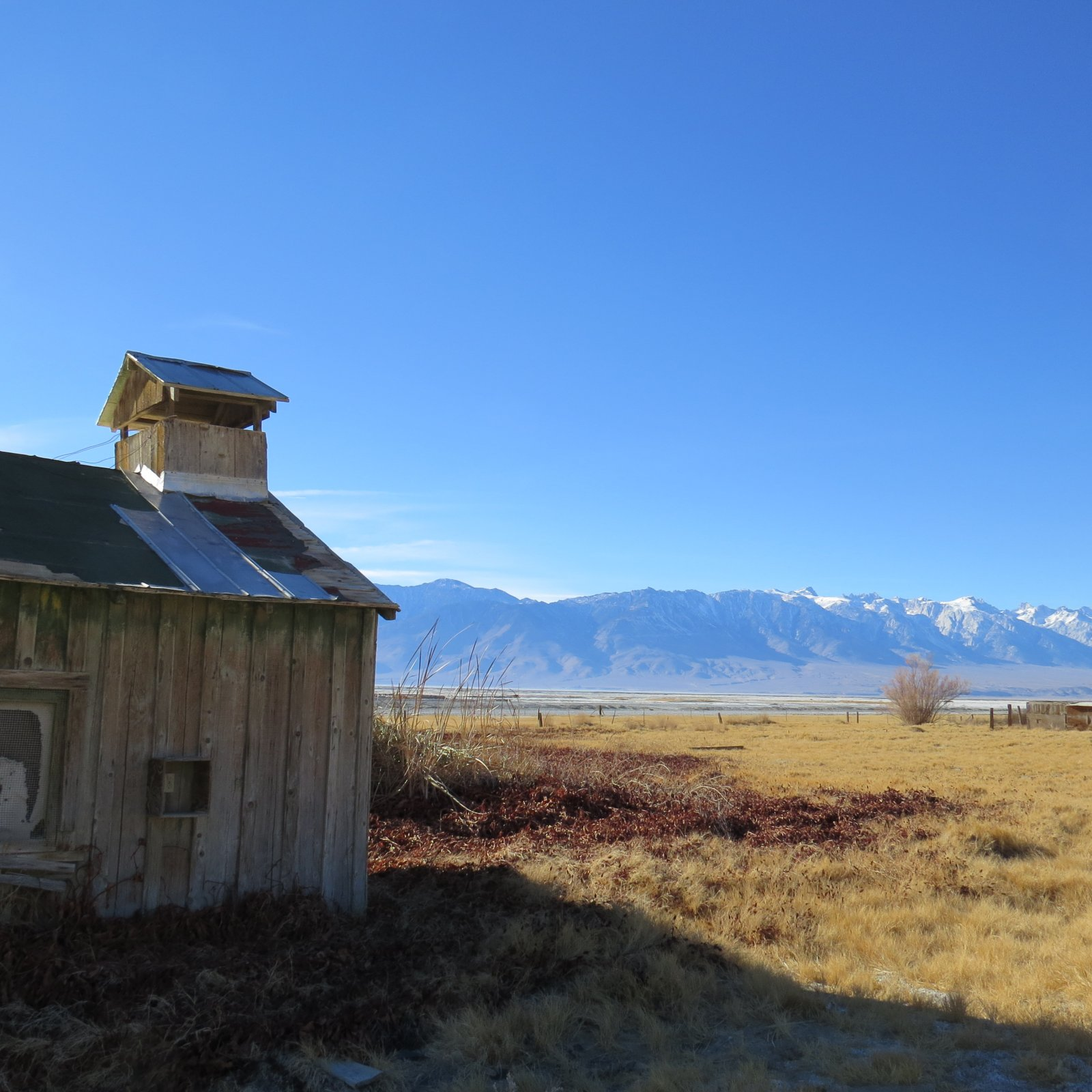 Click image for larger version  Name:Lone Pine Christmas 2013 074.jpg Views:157 Size:292.1 KB ID:206760