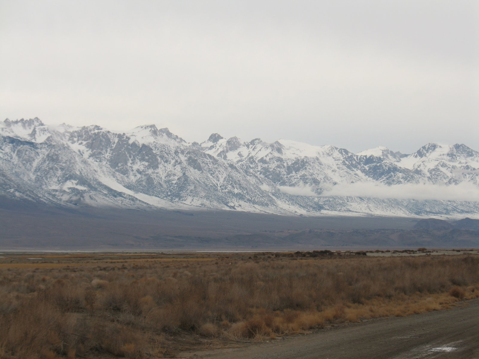 Click image for larger version  Name:Lone Pine Christmas 2010 076.jpg Views:166 Size:203.3 KB ID:206763