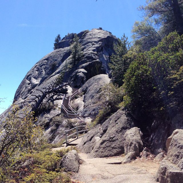 Click image for larger version  Name:sequoia moro rock.jpg Views:59 Size:119.3 KB ID:208014