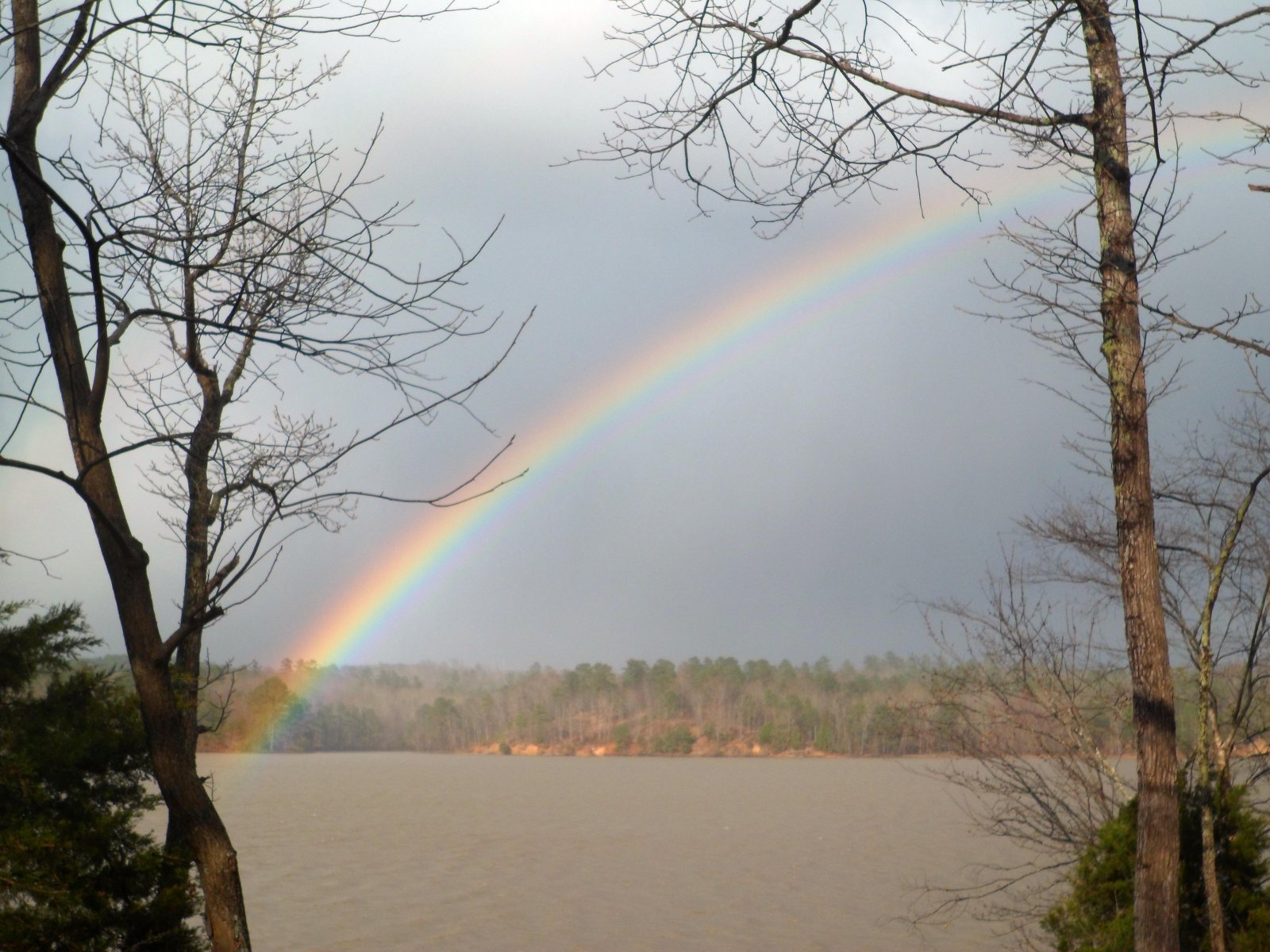 Click image for larger version  Name:Alumalina rainbow-Spring 2014 007.jpg Views:99 Size:299.7 KB ID:208761