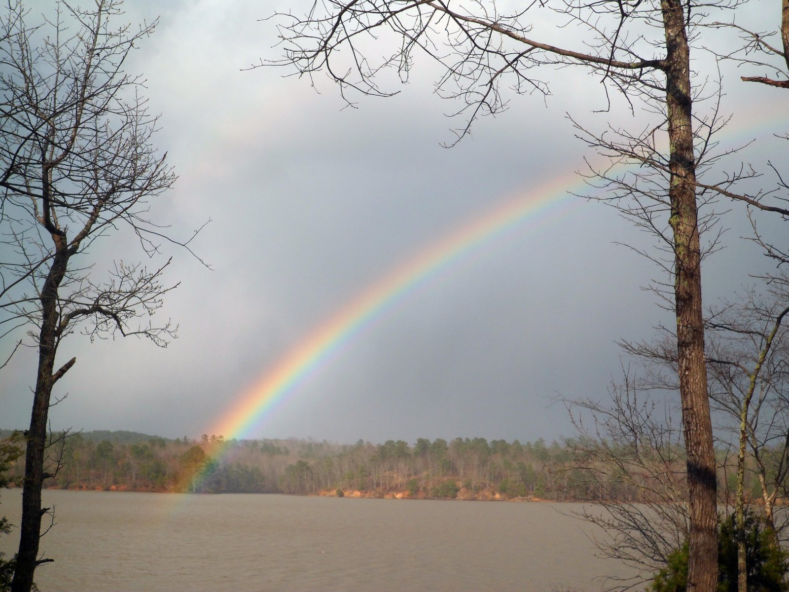 Click image for larger version  Name:Alumalina rainbow-Spring 2014 008.jpg Views:94 Size:341.7 KB ID:208762