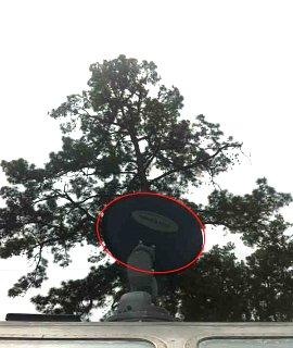 Click image for larger version  Name:dish-into-tree.jpg Views:175 Size:29.8 KB ID:209012