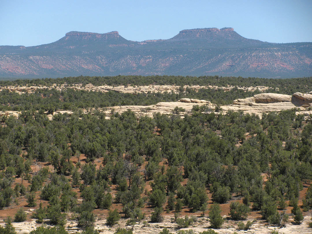 Click image for larger version  Name:BearsEARS.jpg Views:123 Size:240.7 KB ID:212265