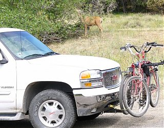 Click image for larger version  Name:deer_at_our_campsite.jpg Views:457 Size:151.1 KB ID:21265
