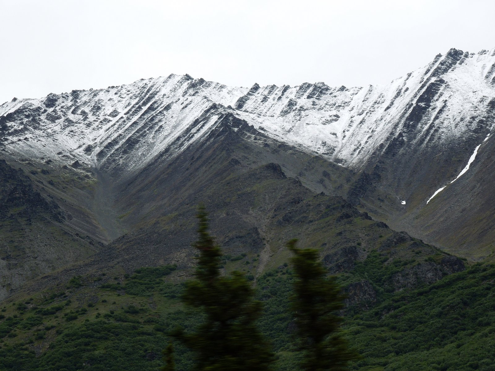 Click image for larger version  Name:Cantwell to Denali 018.jpg Views:74 Size:390.7 KB ID:221116