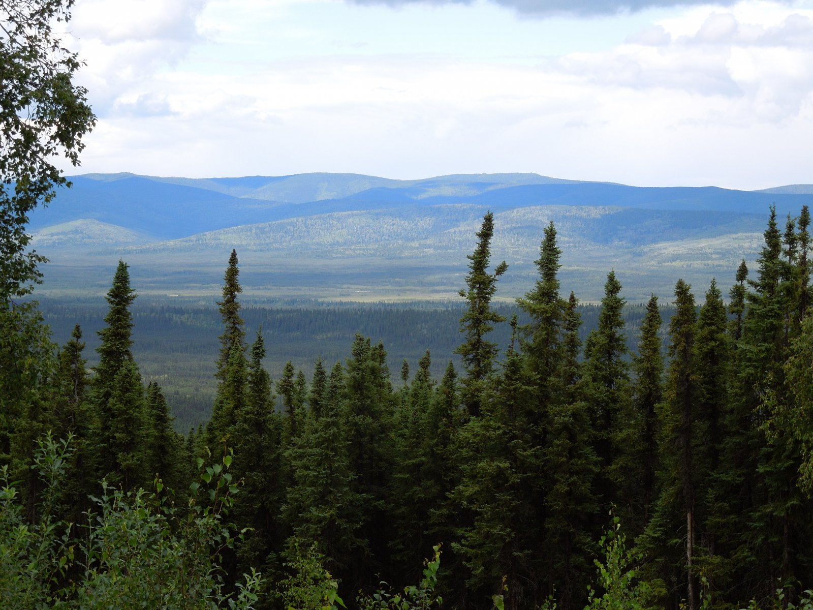 Click image for larger version  Name:Fairbanks 033.jpg Views:49 Size:378.2 KB ID:221292