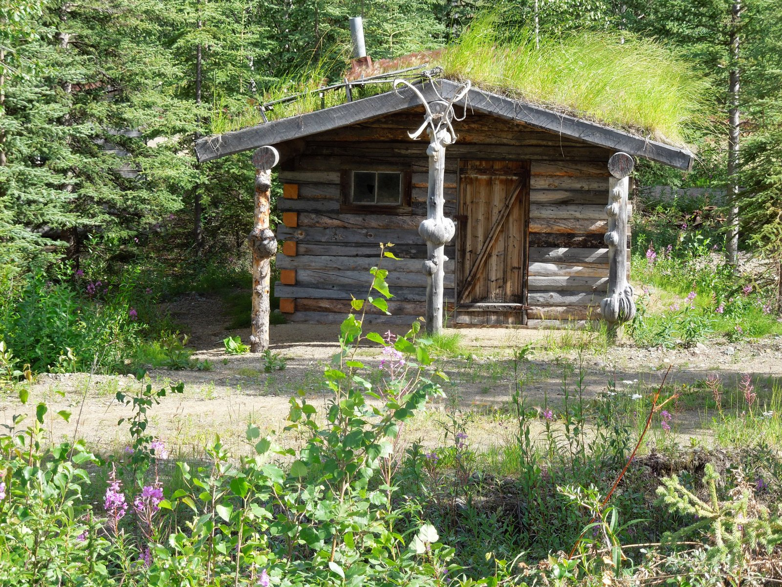Click image for larger version  Name:Tok to Chicken to Dawson City 040.jpg Views:62 Size:815.2 KB ID:221591