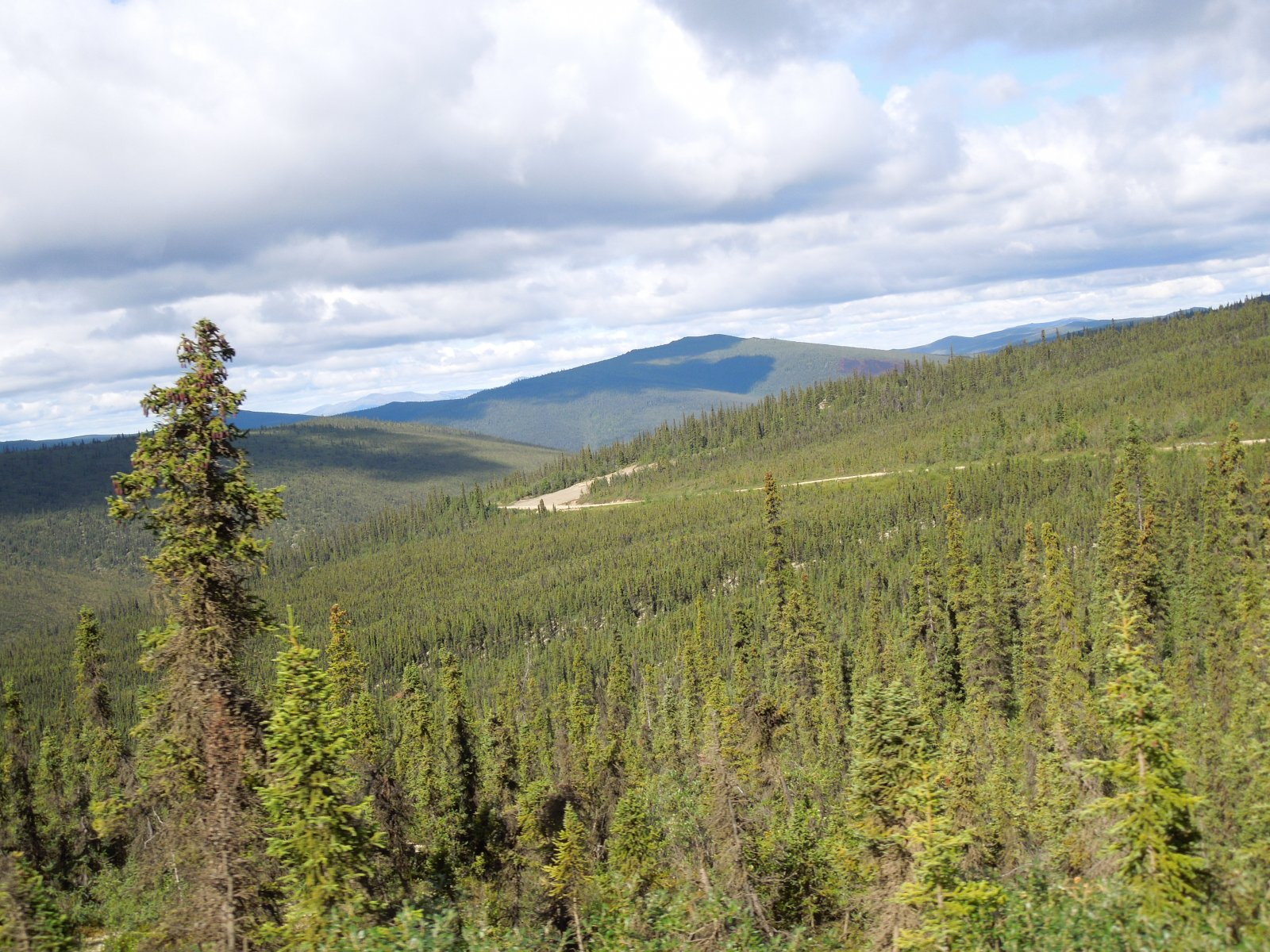 Click image for larger version  Name:Tok to Chicken to Dawson City 142.jpg Views:71 Size:440.9 KB ID:221639