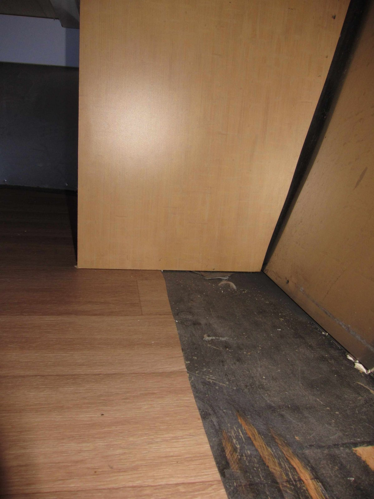 Click image for larger version  Name:Front of the trailer under the bed.jpg Views:54 Size:230.5 KB ID:222098