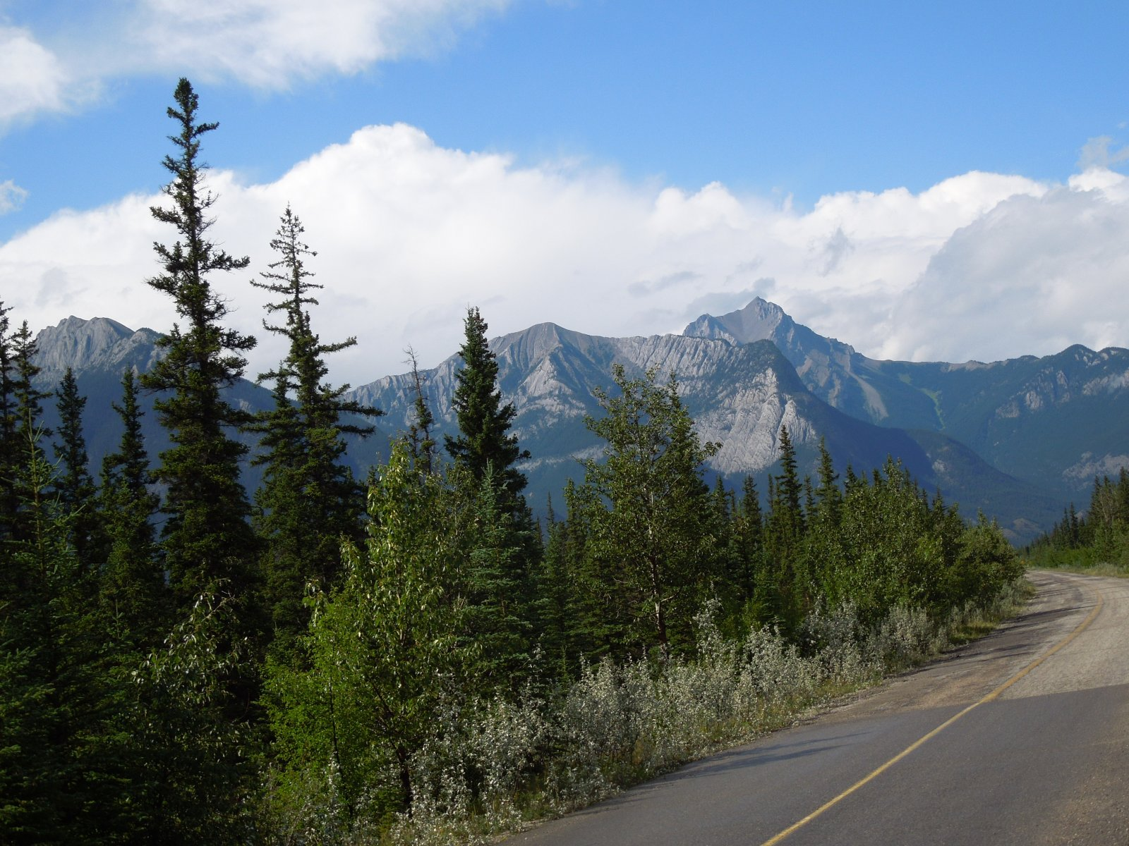 Click image for larger version  Name:Dawson Creek to Icefield Parkway to Cochrane 045.jpg Views:61 Size:391.4 KB ID:222243