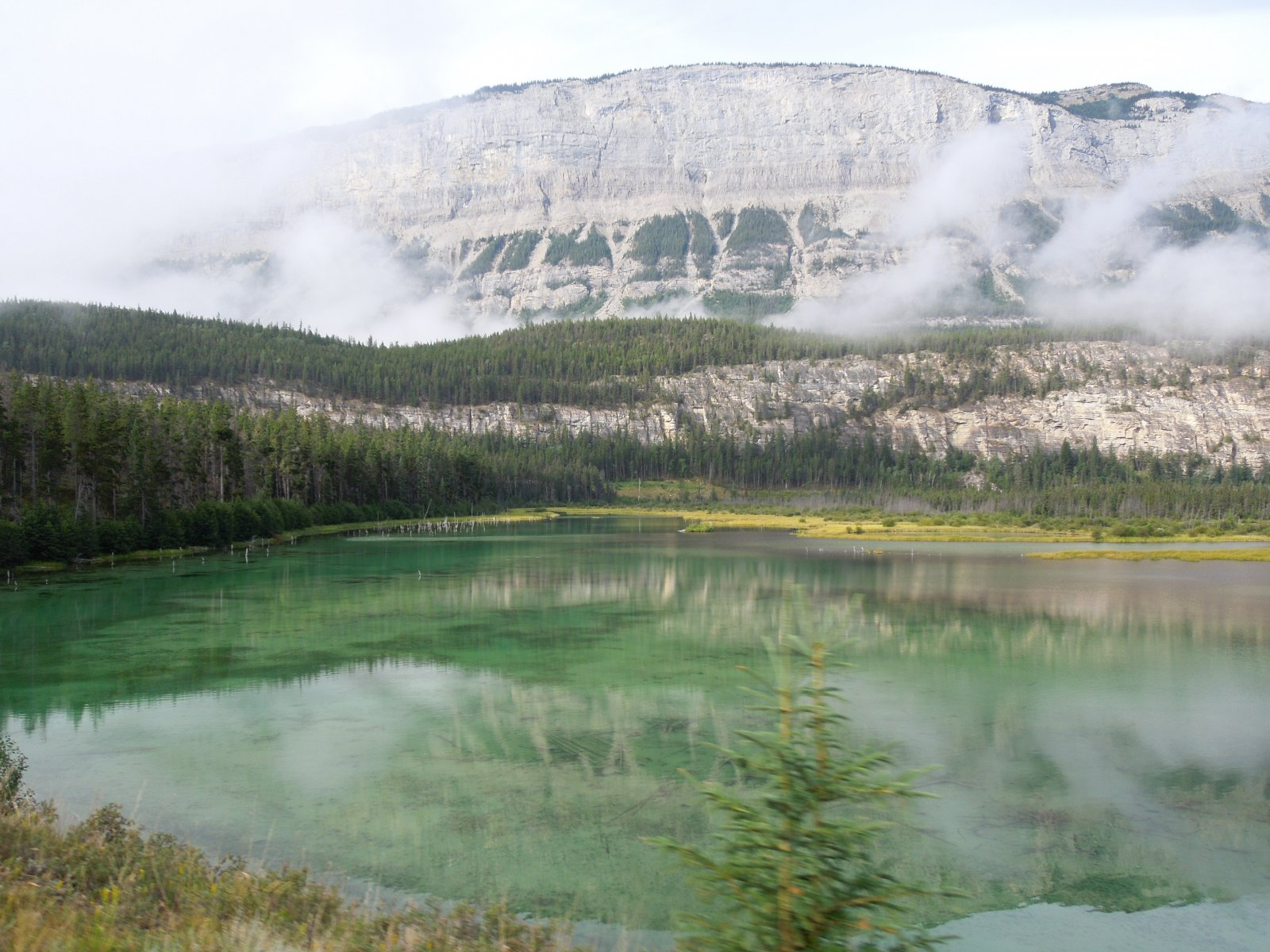 Click image for larger version  Name:Dawson Creek to Icefield Parkway to Cochrane 081.jpg Views:57 Size:310.2 KB ID:222433
