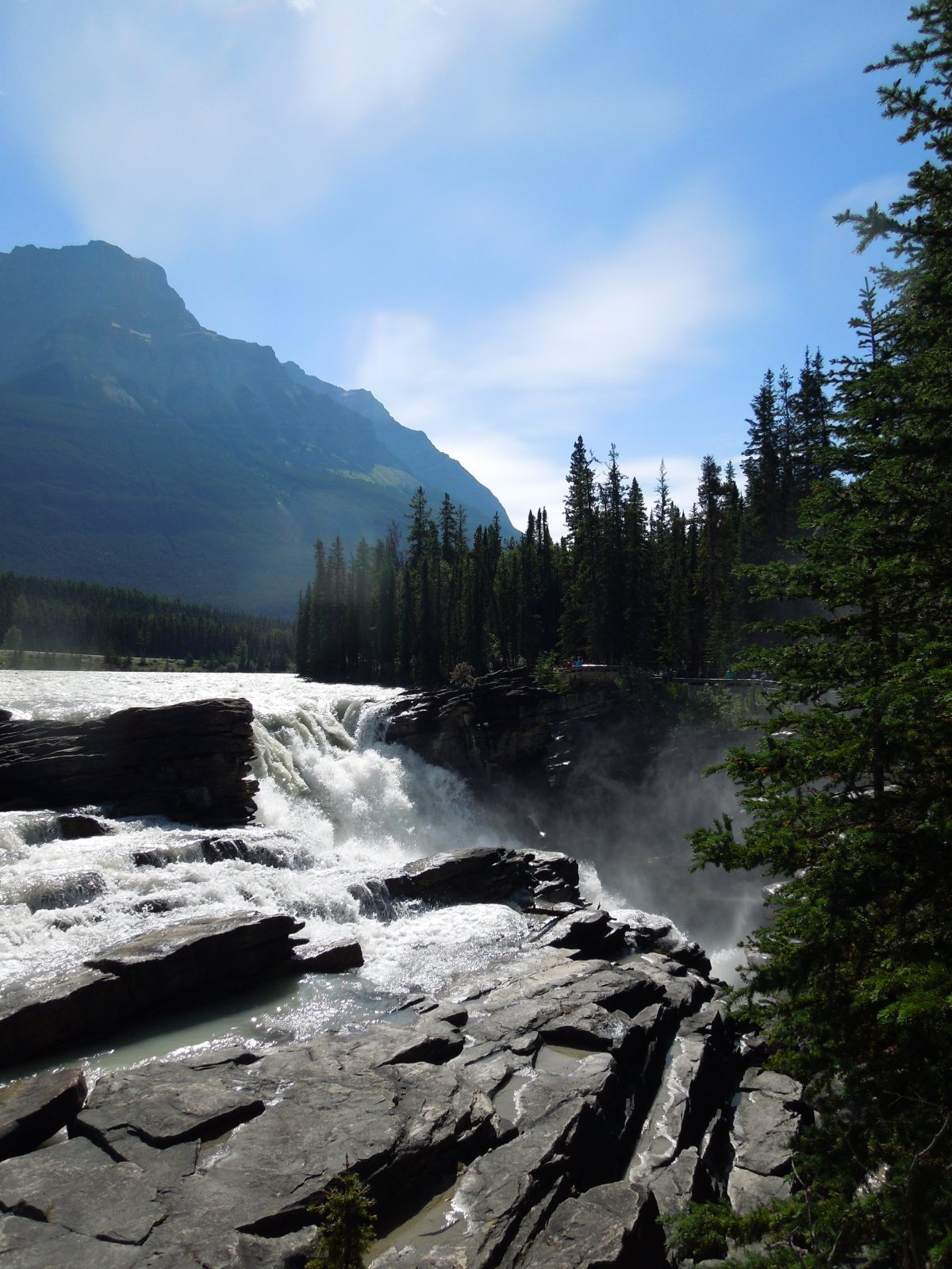 Click image for larger version  Name:Dawson Creek to Icefield Parkway to Cochrane 087.jpg Views:53 Size:346.4 KB ID:222434